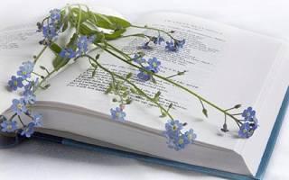 Как с помощью стихов узнать судьбу
