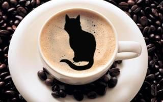 Гадание на кофейной гуще: символ кошка