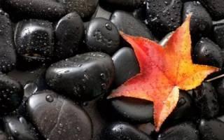Магические свойства белого или черного оникса и какому знаку подходит