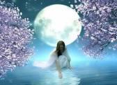 Магия лунных дней: практики для каждой лунной фазы