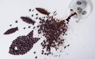 Символ рыбы на кофейной гуще: значение при гадании