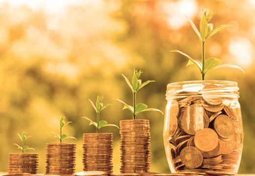 монеты и ростки