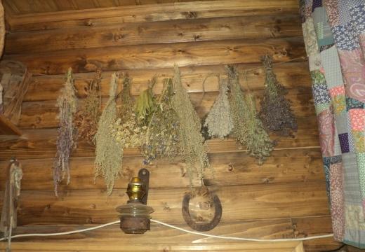 Травы-обереги на стене