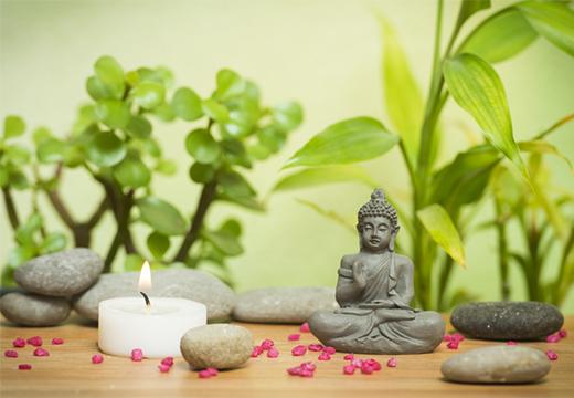 статуэтка будды и растения
