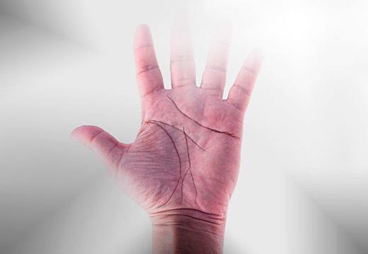 рука с линиями