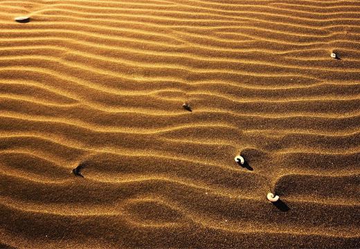 камешки на песке