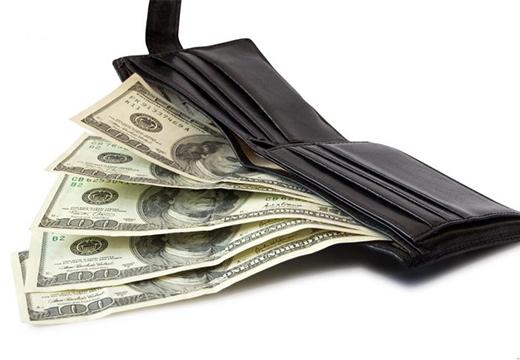 портмоне с долларами