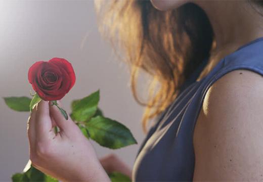 девушка держит розу