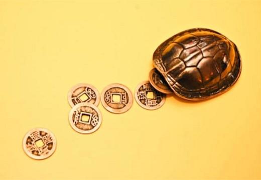черепаший панцирь и монеты
