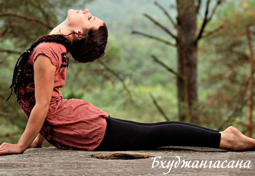 йога поза змеи