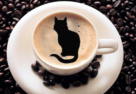 кошка рисунок на кофе