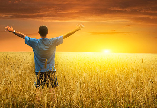 мужчина в поле