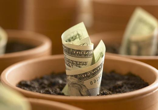 деньга займ условия срок