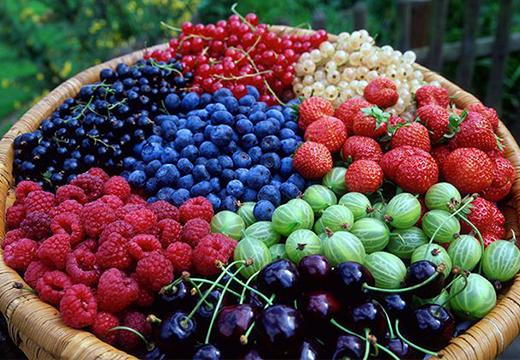 Порча на ягоды