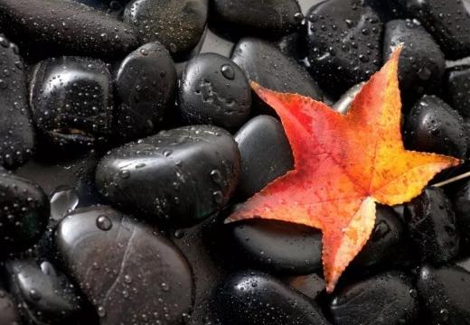 черный оникс и лист