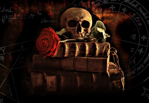 книги череп роза