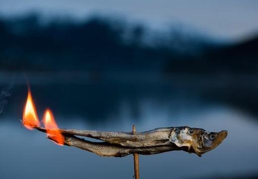 горящая сушеная рыба