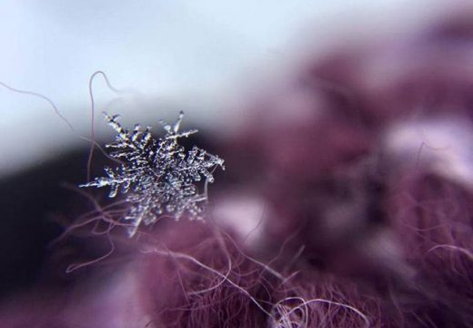 снежинка на ткани