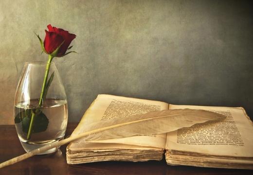 роза книга